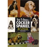 Cocker Spaniel (American) - Guide to Owning